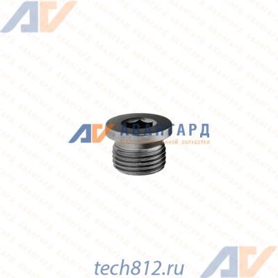 Пробка резьбовая цилиндрическая DIN 908